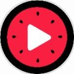 西瓜视频集小程序