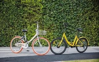 共享单车最好的对垒局面,本该是摩拜 +滴滴、ofo + 微信