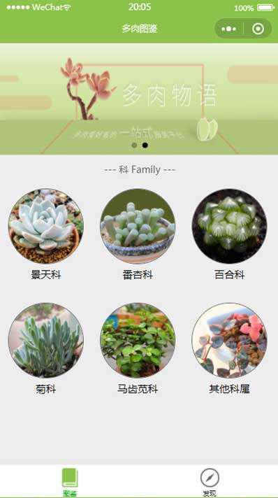 多肉植物图鉴小程序模板